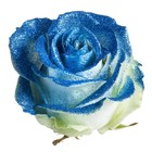 Exclusief glitter blauw