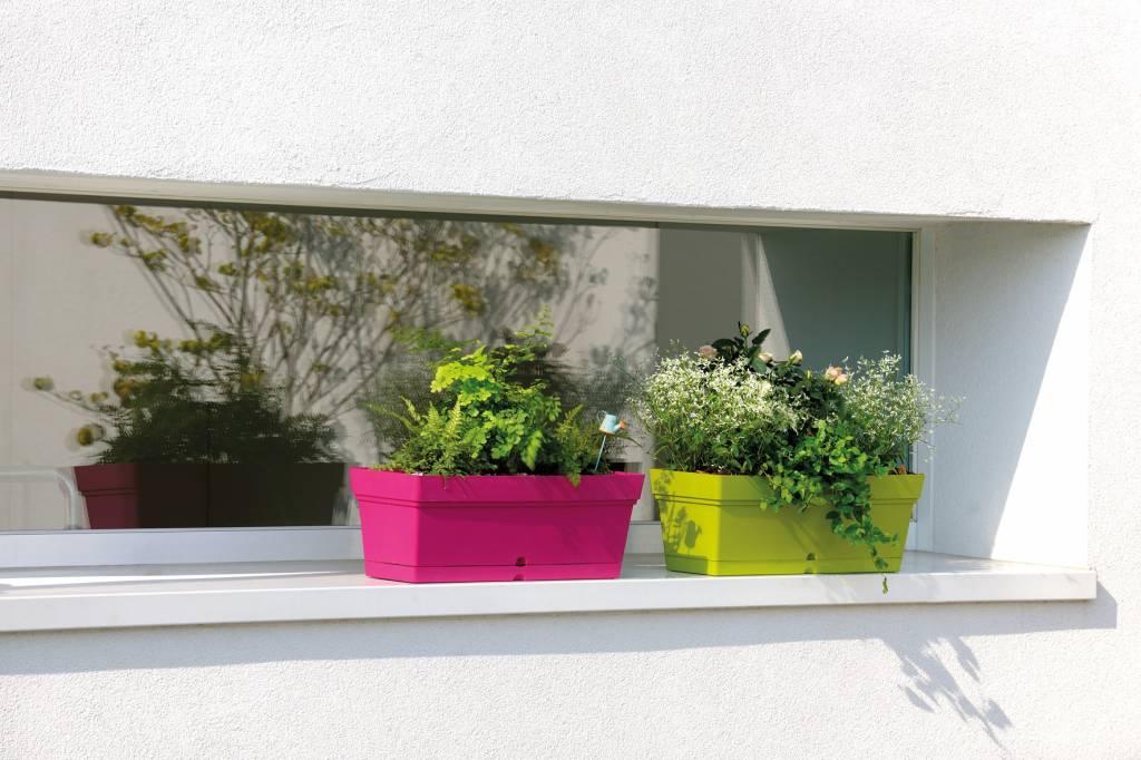 Balkon bloembak 50 cm taupe waterreservoir e surprice for Balkon bloembak