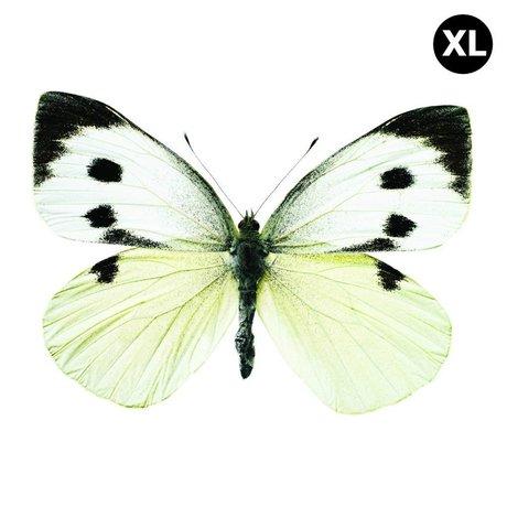 KEK Amsterdam Muursticker vlinder XL Butterfly 960 wit bruin grijs 33x24cm
