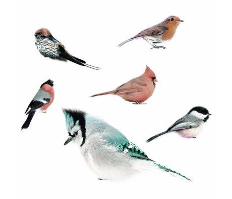 KEK Amsterdam Muurstickers Vogel collectie, set van 6