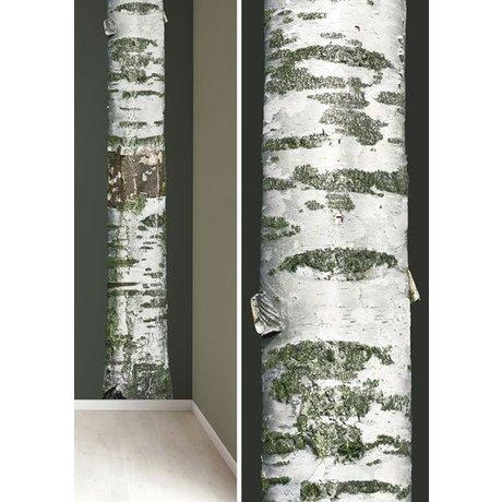 KEK Amsterdam Muursticker boomstam 'Home tree 8' wit/bruin/groen 32x300cm vinyl