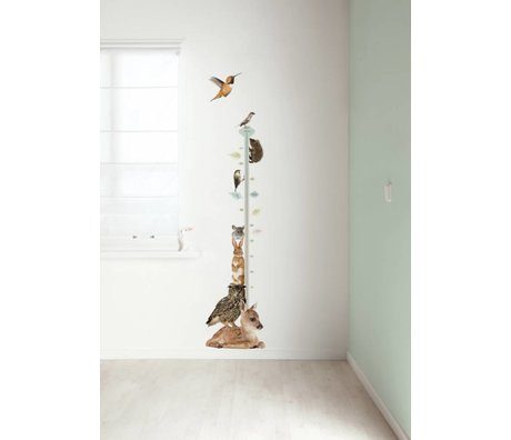 KEK Amsterdam Muursticker groeimeter multicolour 40x150cm Forest Friends Growth Chart 1 muurfolie