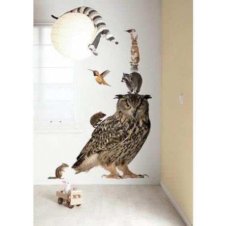 KEK Amsterdam Muursticker multicolour 97x112cm Forest Friends Set Owl XL muurfolie