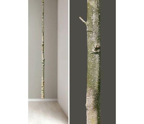 KEK Amsterdam Muursticker boomstam 'Home tree 5' bruin/groen 5x260cm vinyl