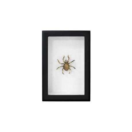 HK-living Fotolijst spin zwart goud kunstof katoen messing 15,5x10,5x4cm
