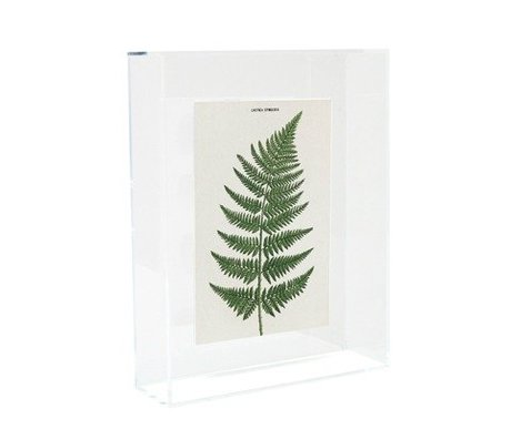 HK-living Schilderij / fotobord Varen acryl 17x5x22cm