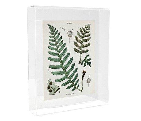 HK-living Schilderij / fotobord Varens acryl 22x5x27cm