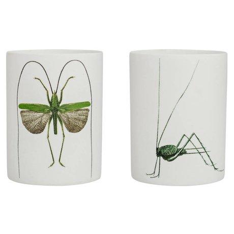 Bloomingville Waxinelichthouder Green Bug set van 2 wit groen aardewerk Ø6x8cm