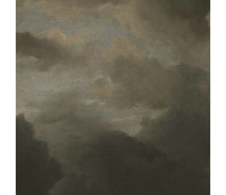 KEK Amsterdam Behang Golden Age Clouds V multicolor vliespapier 194,8x280cm