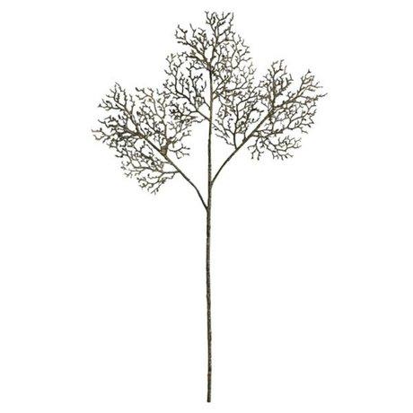 HK-living Decoratie cypress blad 69cm