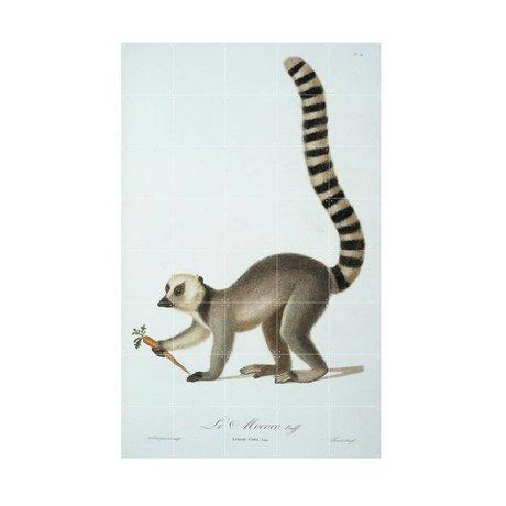 IXXI Wanddecoratie Ring tailed lemur multicolour papier S 80x120cm