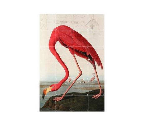 IXXI Wanddecoratie Audubon Flamingo multicolour papier S 80x120cm
