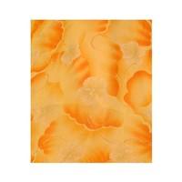 Salwar Kameez Ladies - Orange Delight