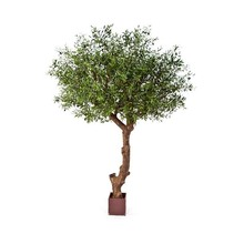 Natural olive tree poly kunstplant