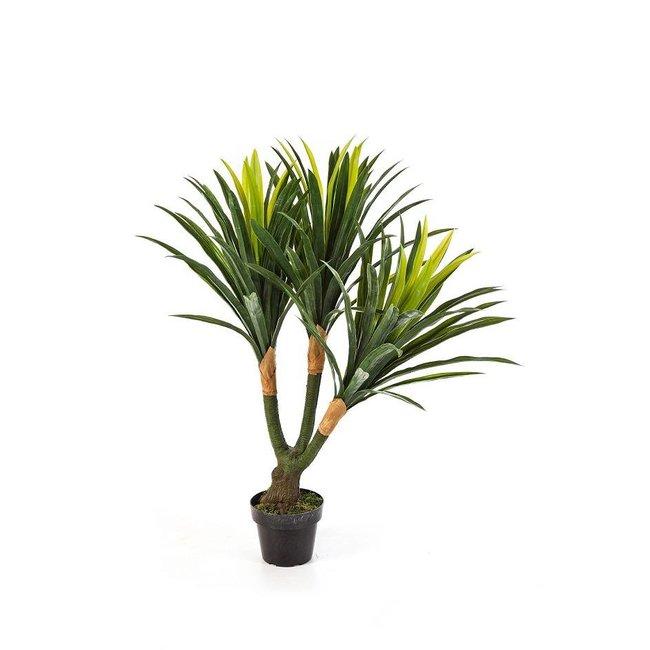 Jouw Yucca Tree Kunstplant Kopen Fleurdirect