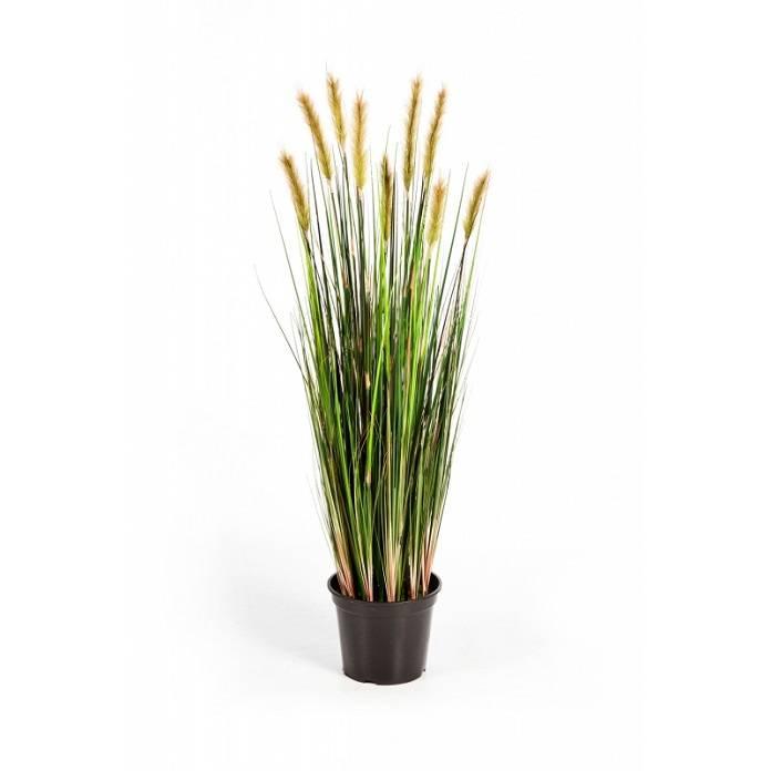 jouw gras vossenstaart kunstplant online bestellen fleurdirect. Black Bedroom Furniture Sets. Home Design Ideas