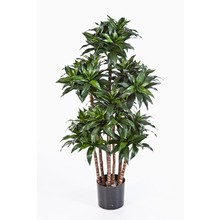 Dracaena fragrans compacta kunstplant