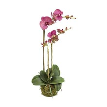 Phalaenopsis plant kunstplant