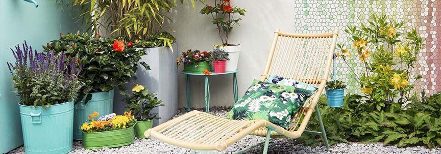 Kamerplanten in de zomer buiten zetten