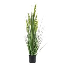 Graan gras  kunstplant
