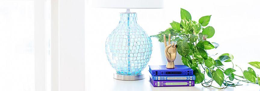 Geef uw kamerplanten een goede start in de lente