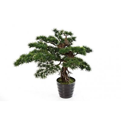 Bonzai pinus kunstplant