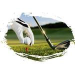 Sportprijzen golf