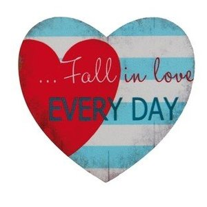 Magneet 'Fall in Love every day'