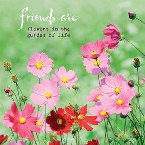 Dubbele kaart met envelop 'Friends are'