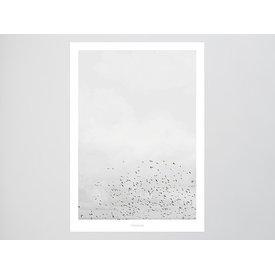 """typealive Poster """"Landscape No. 41"""" von typealive"""