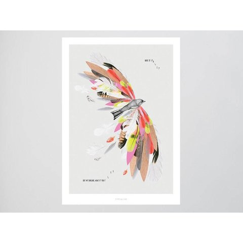 "Postkarte ""Fly"" von typealive"