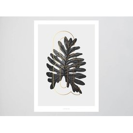 "typealive Poster ""ABC Plants - &"" von typealive"