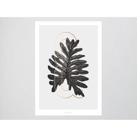 ABC Plants - &