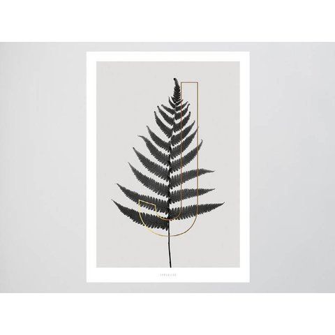 ABC Plants - J