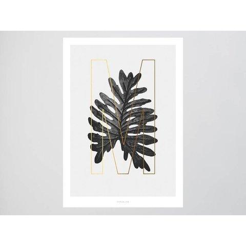 ABC Plants - M