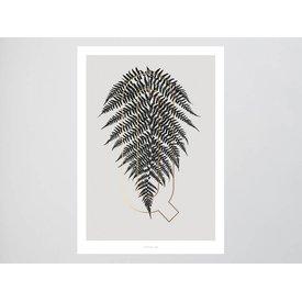 "typealive Poster ""ABC Plants - Q"" von typealive"
