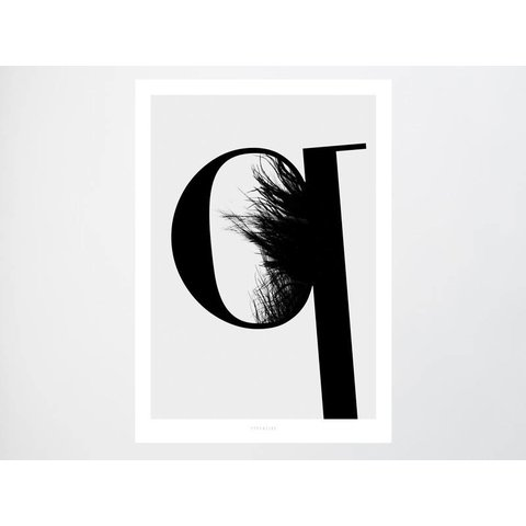 "Poster ""ABC Flying Letters - Q"" von typealive"