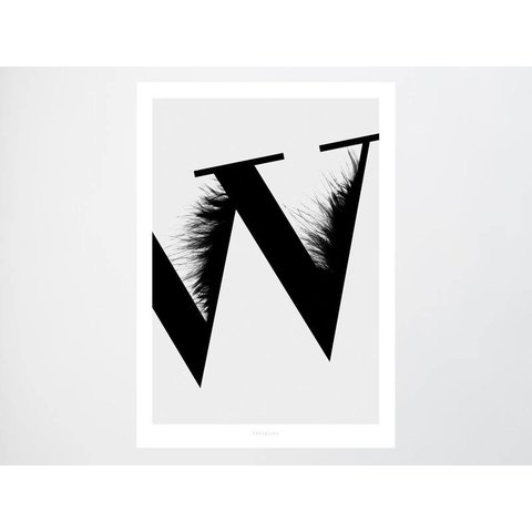"""Poster """"ABC Flying Letters - W"""""""