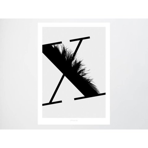 "Poster ""ABC Flying Letters - X"" von typealive"