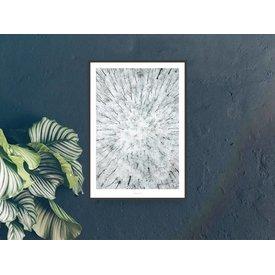 "typealive Poster ""Above The Woods No. 4"" von typealive"