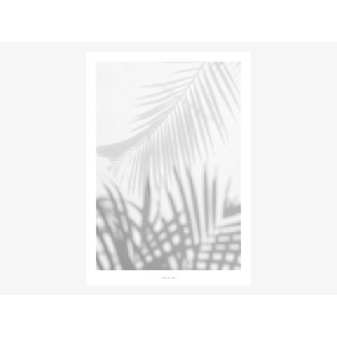 "Poster ""All About Palms No. 1"" von typealive"