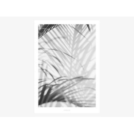 """typealive Poster """"All About Palms No. 2"""" von typealive"""