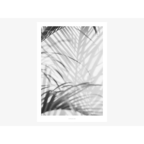 "Poster ""All About Palms No. 2"" von typealive"