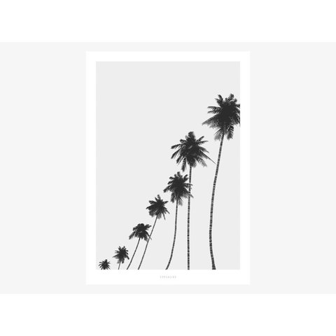 "Poster ""All About Palms No. 6"" von typealive"