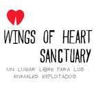 Santuario Wings of Hearts