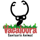 Vacaloura, Animal Sanctuary
