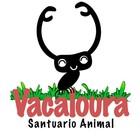 Vacaloura, Santuario Animal