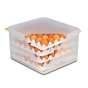 TOM-GAST The container for eggs