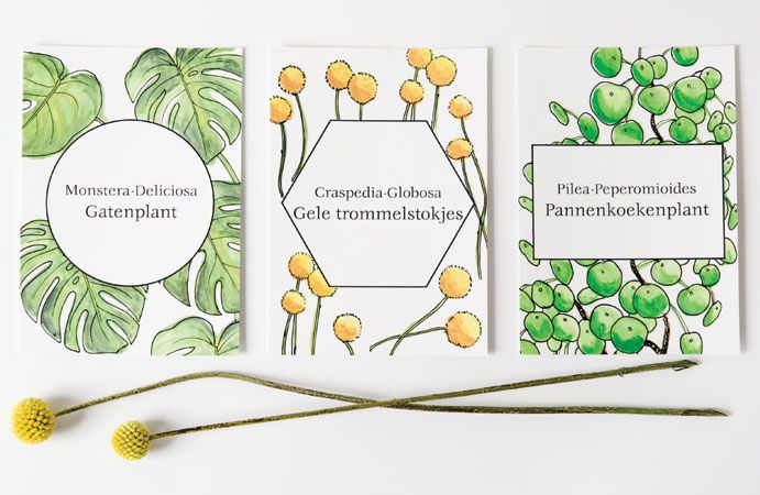 Botanische kaarten