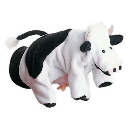 Beleduc koe